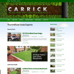 Carrick Artificial Grass